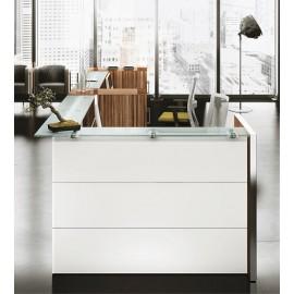NICE 04 hochglanz Glas-Bürotheke, Empfangsbereich, Rezeption mit Ablagen und viel Stauraum, in weiß, Zebrano Holz