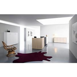 Riga 08 exklusives Design, Büro Empfang