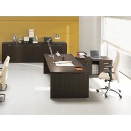 DELTA EVO 01 Chefzimmer Schreibtisch, individuell, gerade Form, geschlossen Seiten, in Wenge