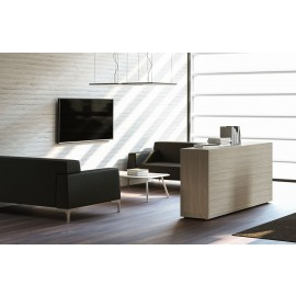 IULIO - 07_01 Bürolounge mit modernem Sideboard als Raumtteiler in Ulme/grau Dekor, Couchtisch mit  Tischbeinen Edelstahlfarben, hochwertige Büro-Loungemöbel