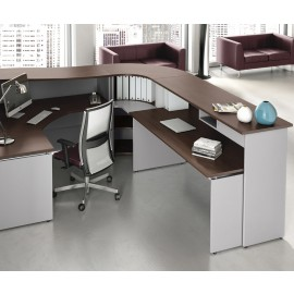ASK 04 günstiger Empfangstresen für z.B. Büros, Ärzte, Kanzleien usw. , Schreibtisch mit Ablagen